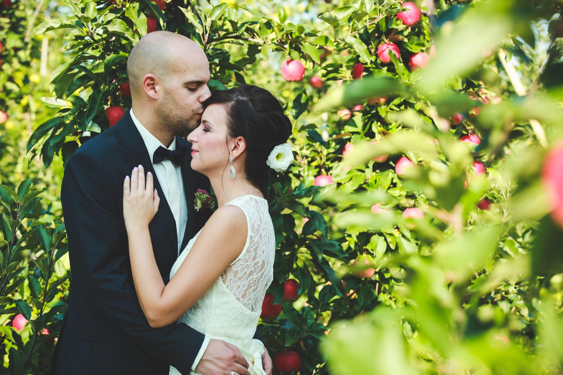 5 Fotografia ślubna śląsk plener poslubny w sadzie